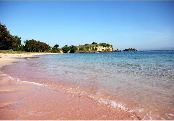 gambar pantai pink lombok