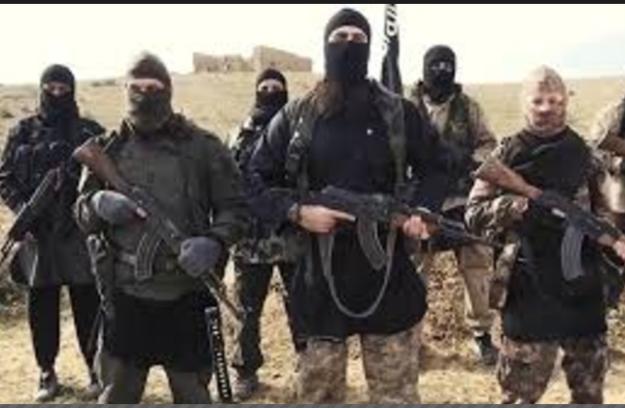 gambar teroris